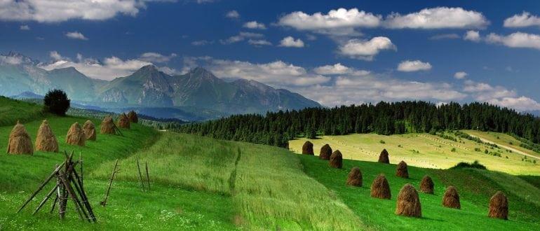 Польши Природа